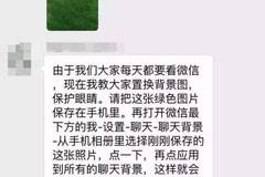 绿色草地的照片,建议将微信聊天背景全部设置成该图