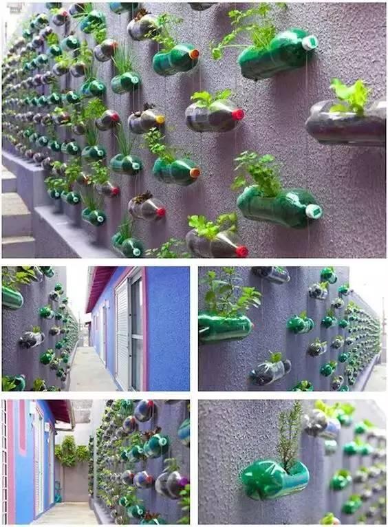 塑料瓶diy手工制作花盆