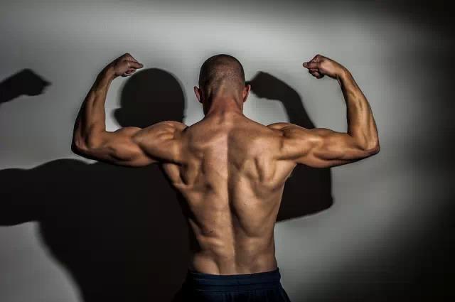 男女健身方法有什么不同?几个经典的增肌动作!
