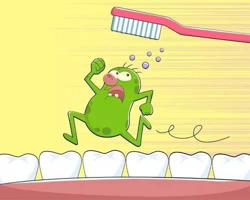 牙齿细菌矢量图
