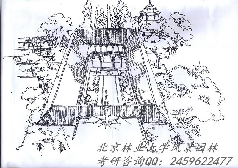 2017年北林风景园林园林设计考研手绘辅导