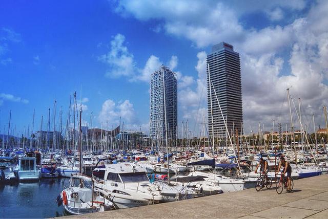 奥林匹克港周围林立的高楼大厦.图片