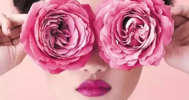 玫瑰花图片带英文名
