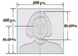 照片尺寸和头部尺寸要求