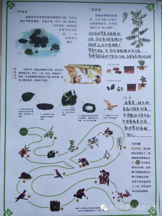 青岛市第二实验小学?|?生存课程·二十四节气之谷雨