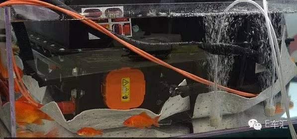 比亚迪电动车摊上大事 又是电池问题高清图片