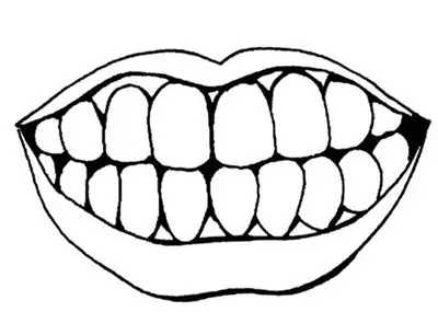 牙齿简笔画,人物简笔画大全,怎么画牙齿简笔画画法,教幼儿   学画   牙齿简笔画图片,关于人物牙齿的简单画法.