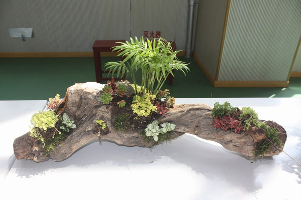 废弃物手工制作花盆