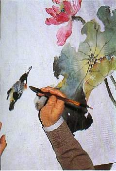 国画入门学习国画荷花绘画步骤(二)