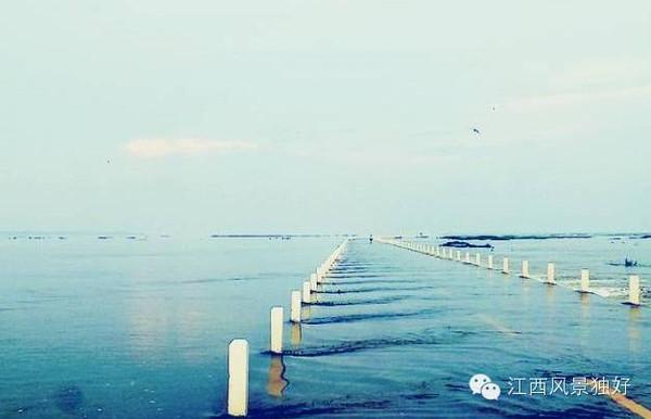每当鄱阳湖水位上涨后,路面被湖水淹没,公路在水中犹如一条蛟龙,水中