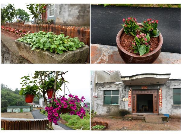 哪家才是你心中的 最美庭院 这里有15组农家庭院美呆了图片