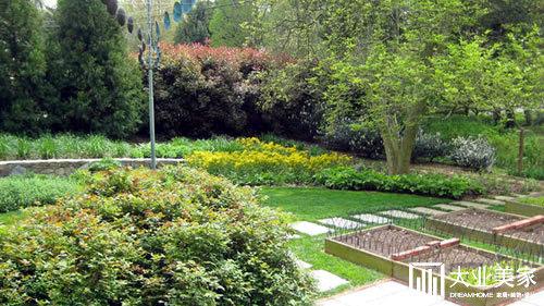 东莞别墅庭院设计出绿色蔬菜小菜园,惊喜!图片