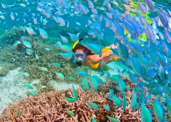 西太平洋马里亚纳群岛最南端——关岛