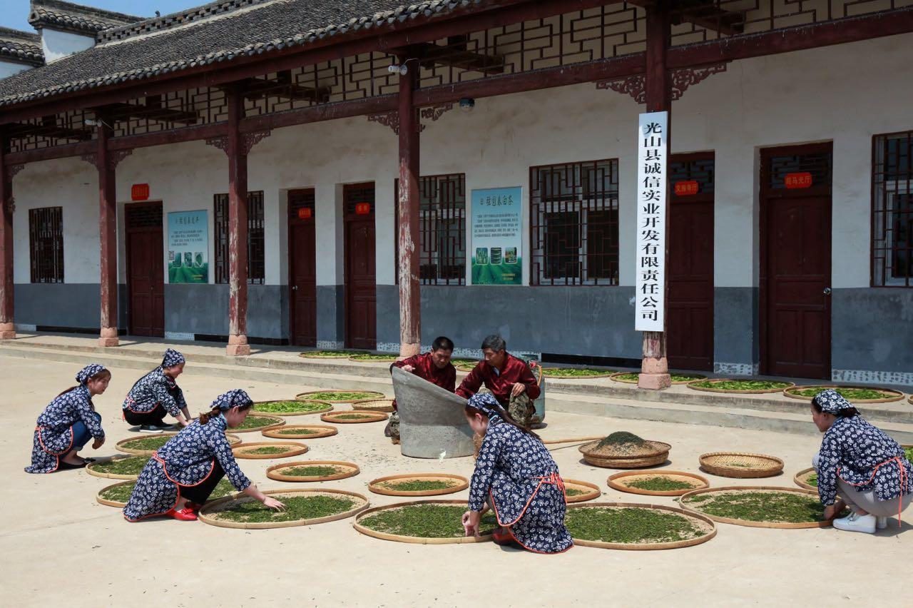 河南省信阳光山县文殊高中所有资料 包括贴吧名字
