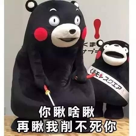 熊本熊表情包大全,400个珍藏表情大放送