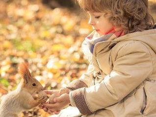 【宝宝帮】看了《欢乐颂》里的邱莹莹我才知道什么是真正教养