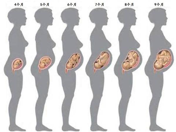 孕婦肚子看男女