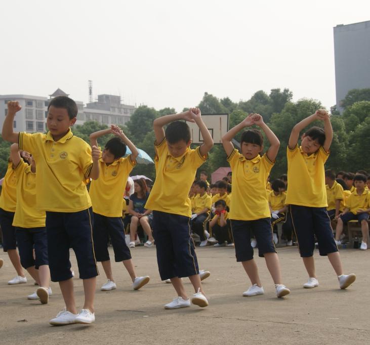 邵阳县石齐学校1600小学生:比赛队列队形 武术操图片