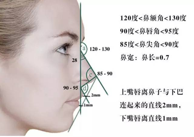 女生完美侧脸的标准