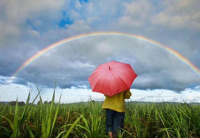 经历过风雨能见彩虹,努力过后必能成功的3生肖-搜狐