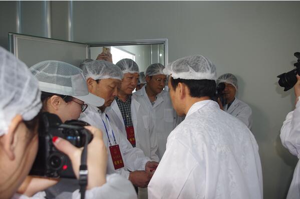 郑州市人大代表团视察郑州祥云食品感叹:行业
