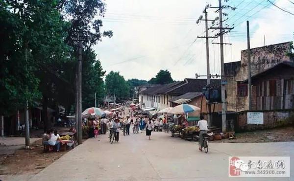 寻乌县有多少人口_江西寻乌一口甜 智慧农业造就自有农业产业链