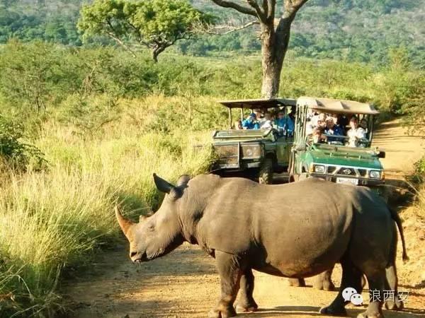 西安设南非签证中心 去非洲大陆最南端彩虹之