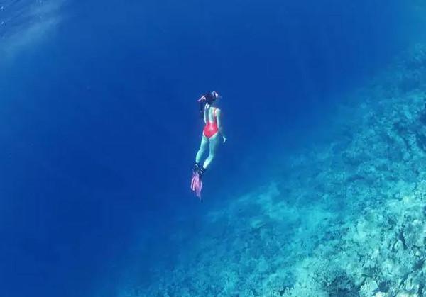 像跑男那样去海上玩水,飞鱼海上漂的意思棒极伯劳飞燕中的劳的感觉图片