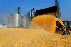 【专家观点】玉米市场的焦点转向天气和物流!