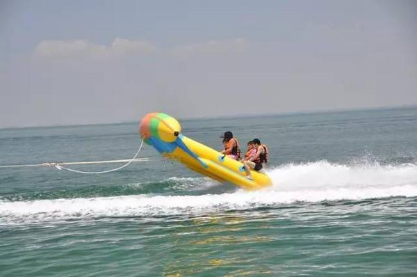 像跑男那样去海上玩水,彩陶海上漂的感觉棒极江豚飞鱼图片