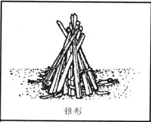 手绘装饰树枝图片