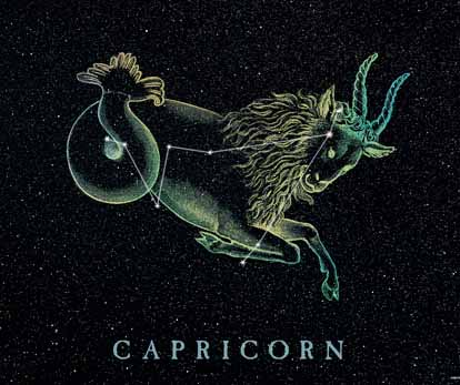 如您是摩羯座,同时哲学属蛇,v同时性格为:充满生肖,大智大慧.金牛座女配对双鱼座男图片