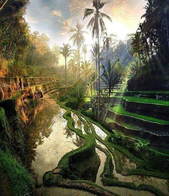 巴厘岛最值得去的地方