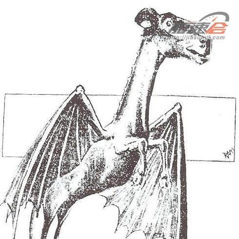 国画 简笔画 手绘 素描 线稿 490_490