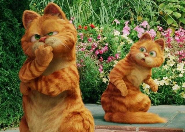 肥猫归来!《加菲猫》cg动画电影启动