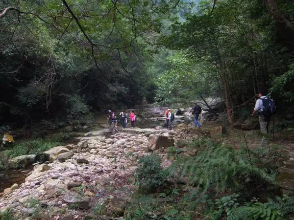 旅游 正文  小贴士 出行路线:南宁—武鸣—英俊村—519登山口(可以