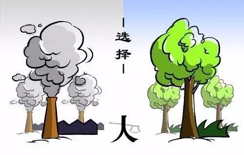 联合国   全球25%死亡人数与环境污染有关