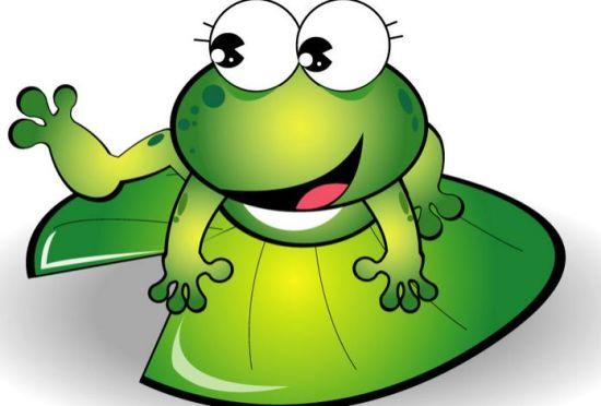 坐井观天,青蛙和小鸟谁错了,错在哪里