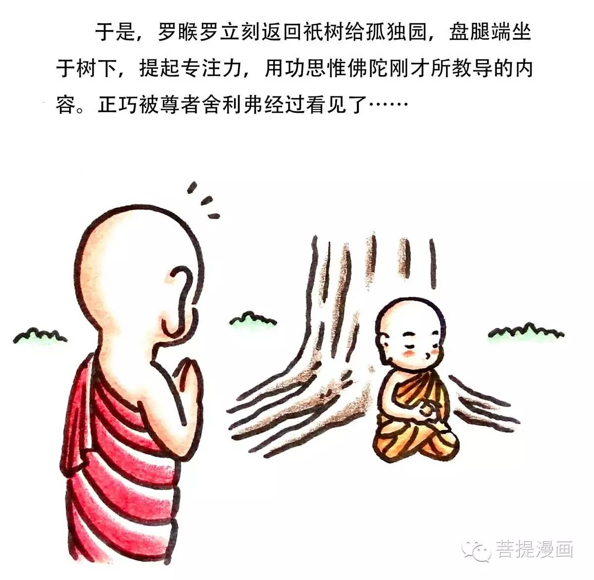 【六一快乐】佛陀教导罗睺罗/菩提漫画图片