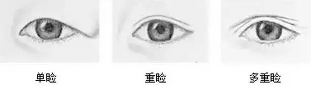 单眼皮和双眼皮的那点事图片