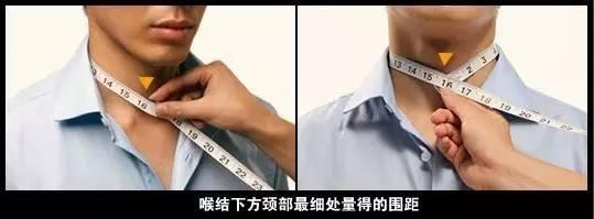 前面脖子骨头结构图