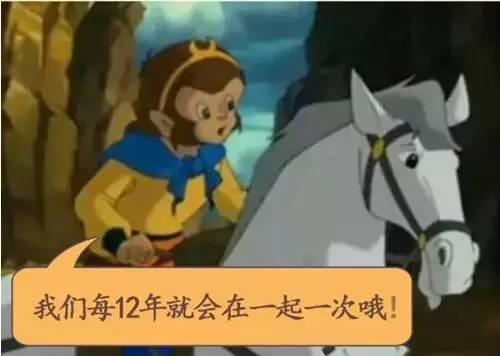 12年一遇 猴年马月 终于要来了 你的愿望实现了吗