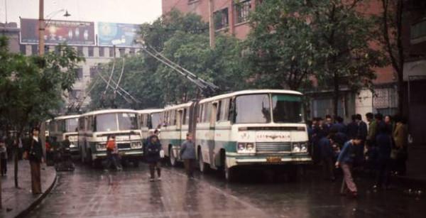 重庆成年人才懂的照片 看到第2张就遭不住老图片