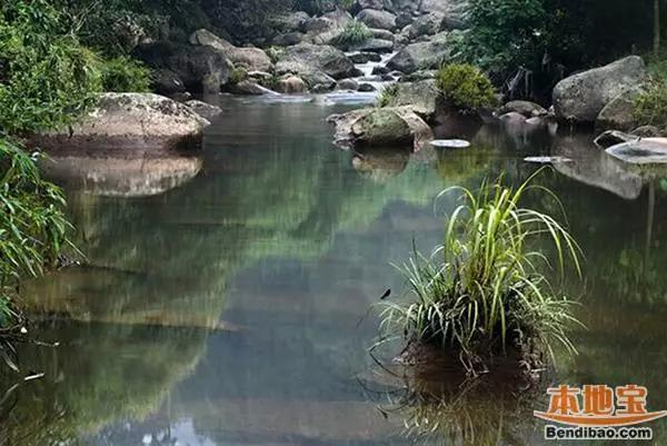 成都-成温邛高速-邛崃-火井镇-高何镇-楠木溪