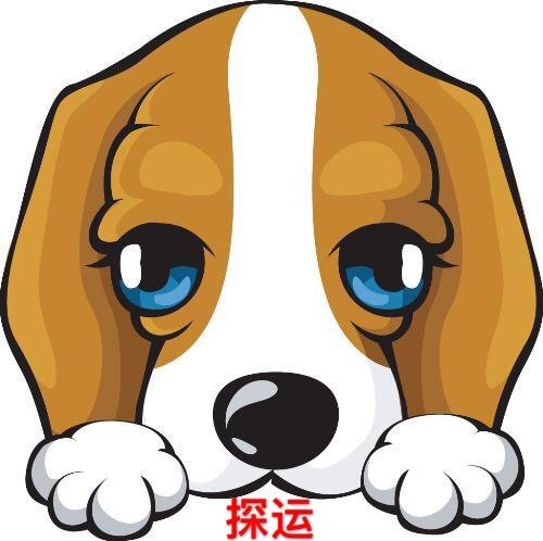 生肖猪狗鸡猴:2016年的开运锦囊图片