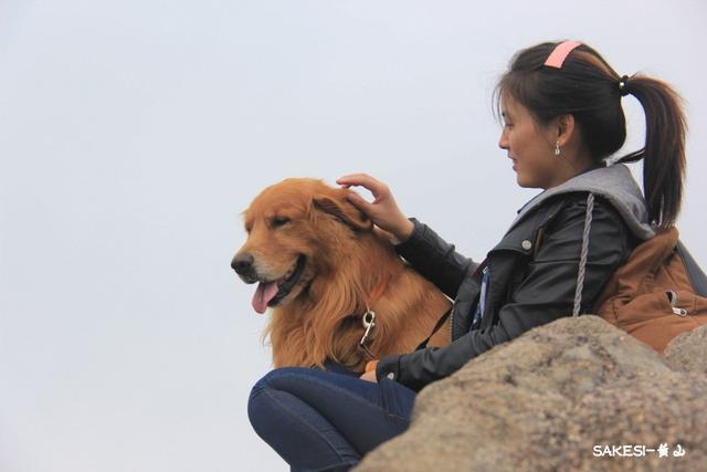 每日一PO宠:爱你的狗狗就带它一起去旅行吧!-蠢萌说