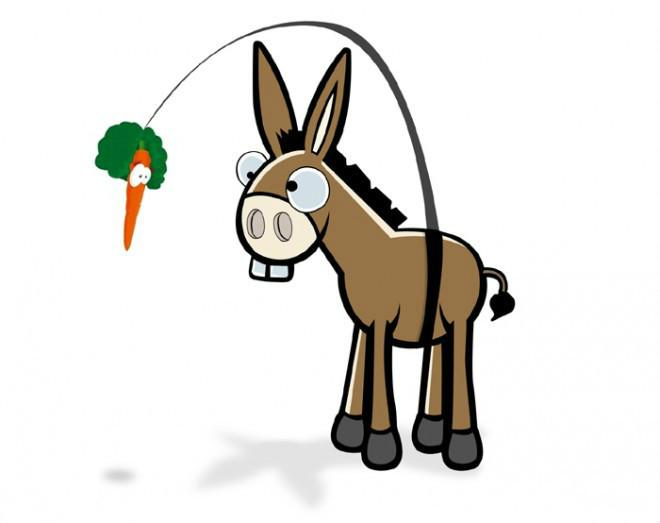 谁动了我的胡萝卜?
