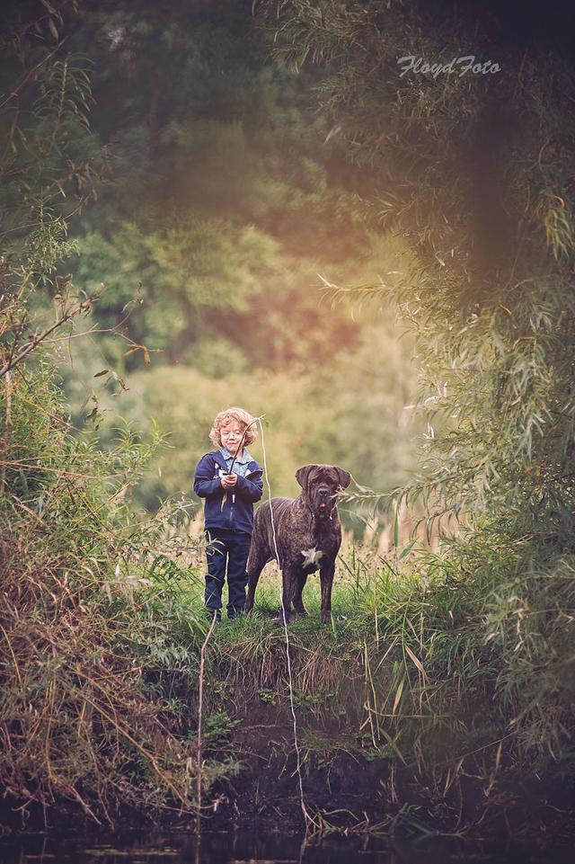 每日一PO宠:一个小男孩和他养的狗狗的故事-蠢萌说
