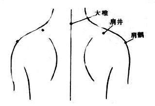 女生穴欲望�_4,按摩肩井穴有利于提高性欲望