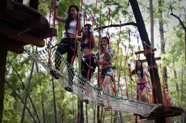 石燕湖最新体验项目---丛林穿越/树上穿越图片